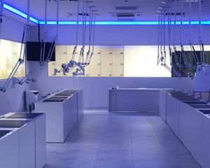 Por que escolher a especialização em Ortodontia IOA Blumenau?